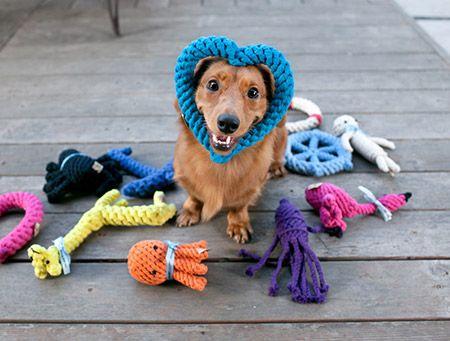 dog-toys-banner