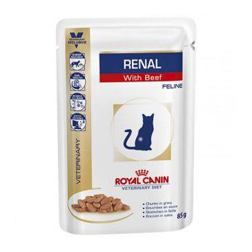 سوپ (پوچ) گربه مبتلا به بیماری کلیوی با گوشت گاو 100gr