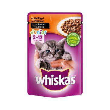 پوچ گربه کیتن با طعم مرغ برند Whiskas